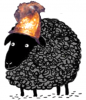 black_sheep_golden_helmet.png